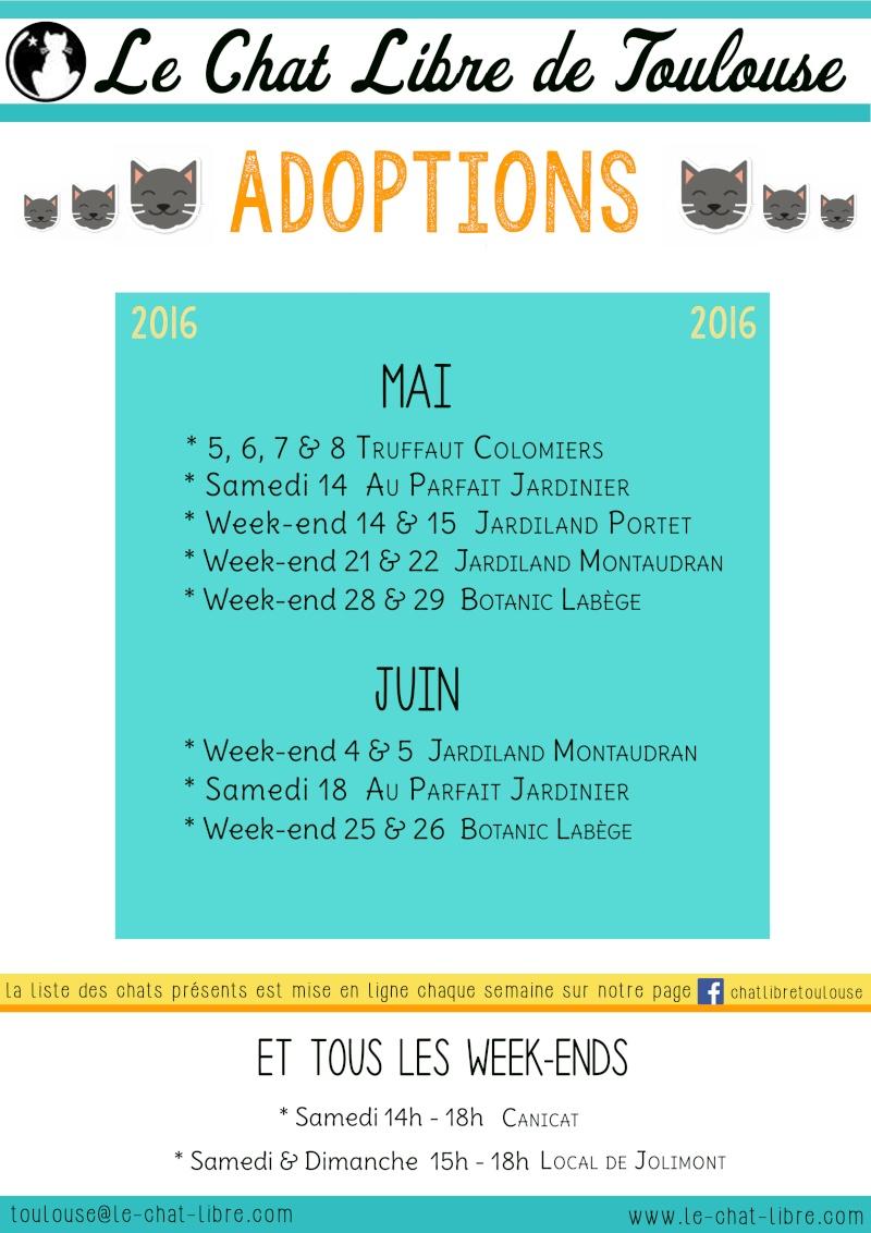 Le planning 2016 des journées adoption 28-04-10