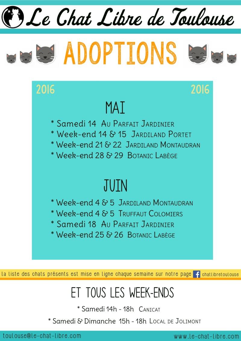 Le planning 2016 des journées adoption 28-04-11