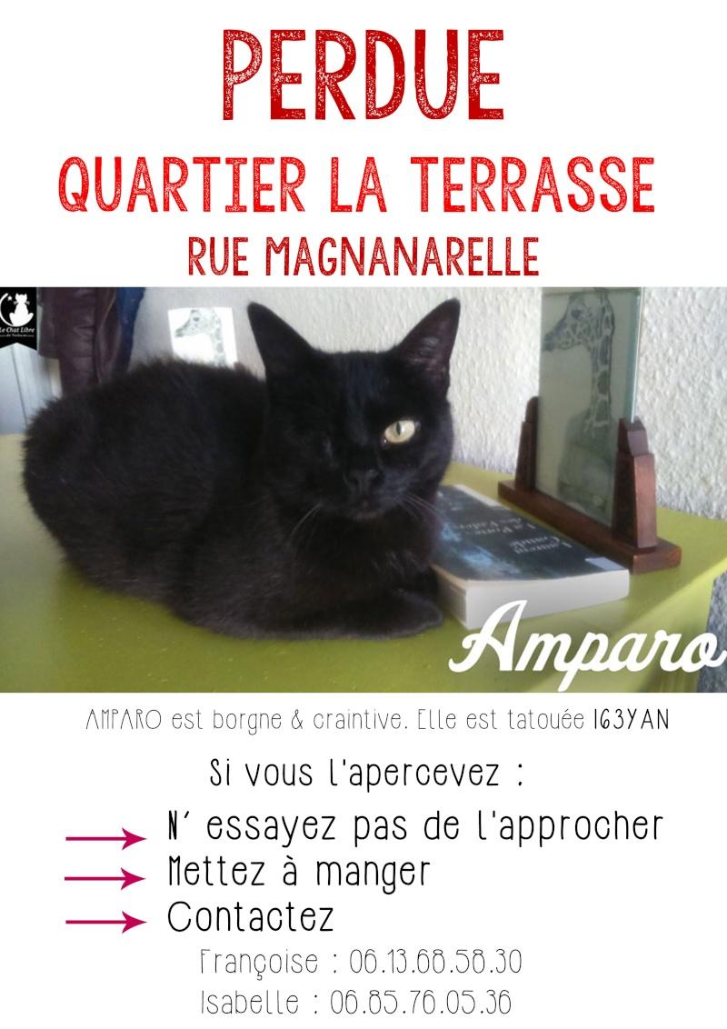 AMPARO Chat-p12