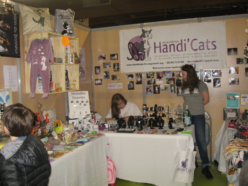 Chiens chats 2016 Img_2813