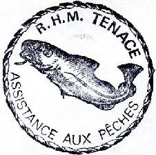 * TENACE (1973/....) * 830310