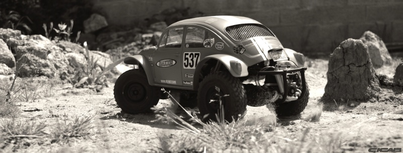 Les sorties du Mst Cmx Sand Scorcher by Gicab Bug_nb10