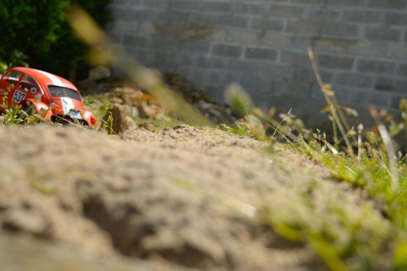 Les sorties du Mst Cmx Sand Scorcher by Gicab Dsc_0923