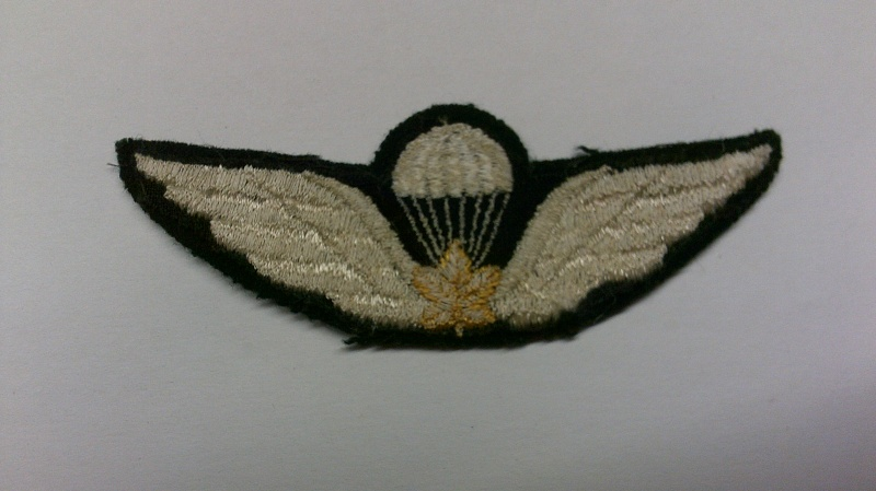 Request for help with Cdn. Army para. qual. badges Dscf0114