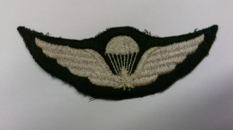 Request for help with Cdn. Army para. qual. badges Dscf0116