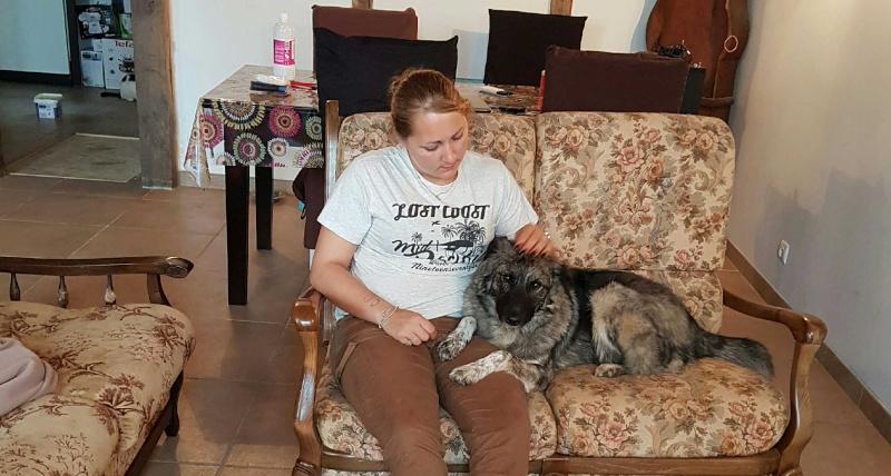 Post les chiens de Chantal 7_avec11