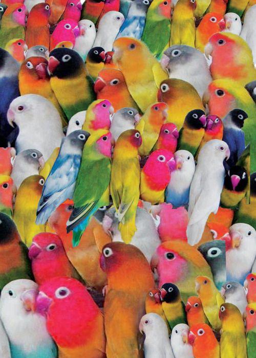 tout est multicolore - Page 40 Cou_3q10