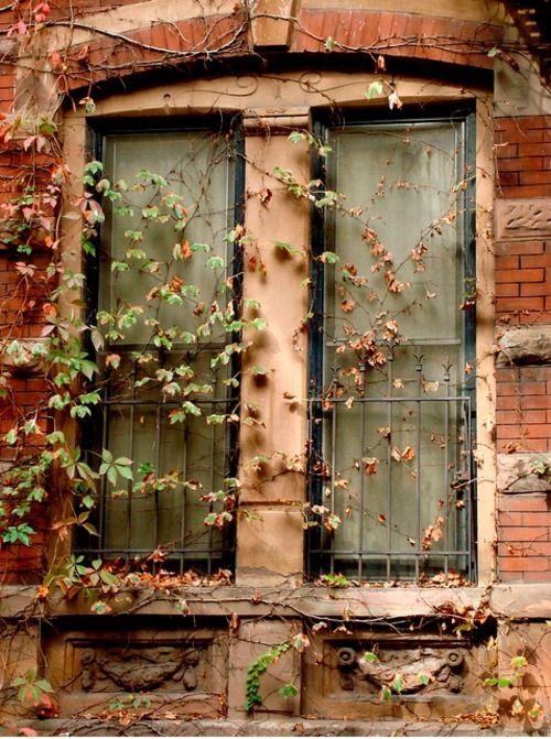 Des fenêtres d'hier et d'aujourd'hui. Fen_0411