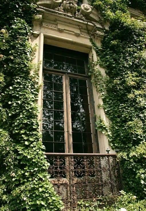 Des fenêtres d'hier et d'aujourd'hui. - Page 38 Fen_f10