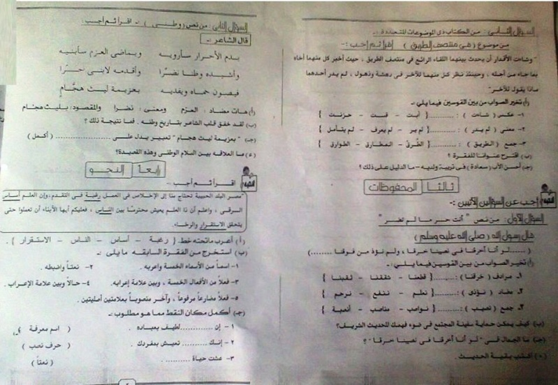 محافظة المنيا: امتحان اللغة العربية للصف السادس الابتدائى الترم الثاني 2016 13219710