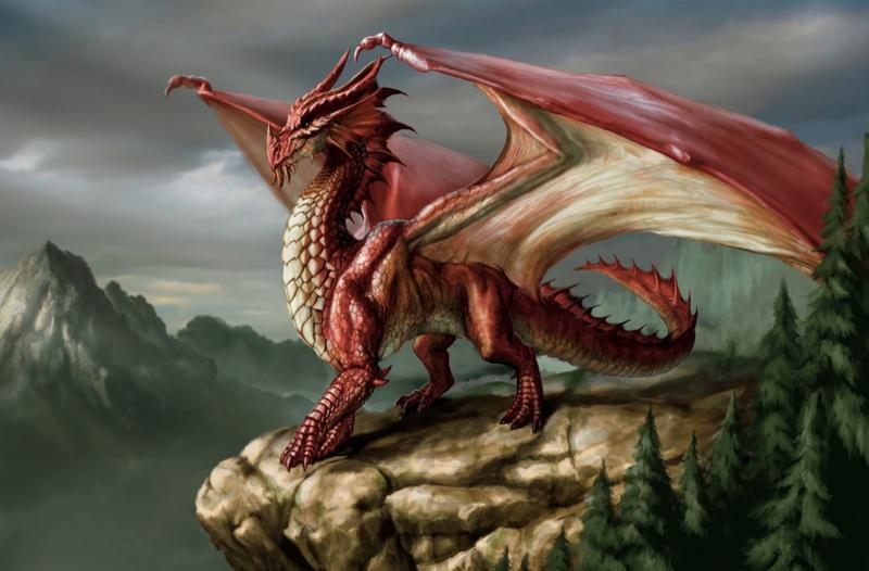 Soldat du Feu Dragon12