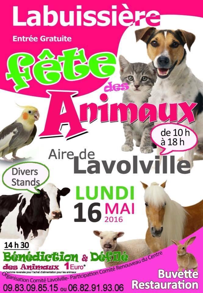 Fête des animaux à Bruay la Buissière le 16 mai toute la journée Image16
