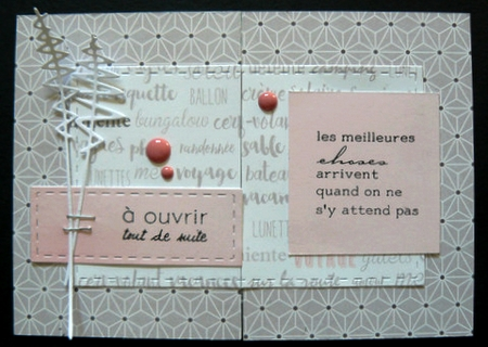 Top Card - La recette élaborée - Page 3 P1100010