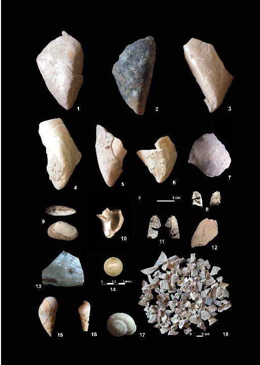 variabilité du régime alimentaire chez néandertal Coquil10