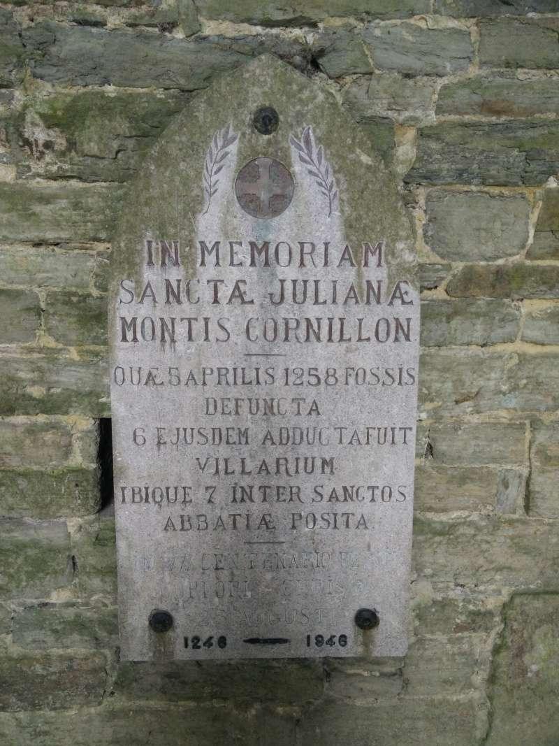 Balade dans l'Abbaye de Villers-La-Ville  Img_2037