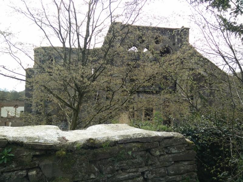 Balade dans l'Abbaye de Villers-La-Ville  Img_2039