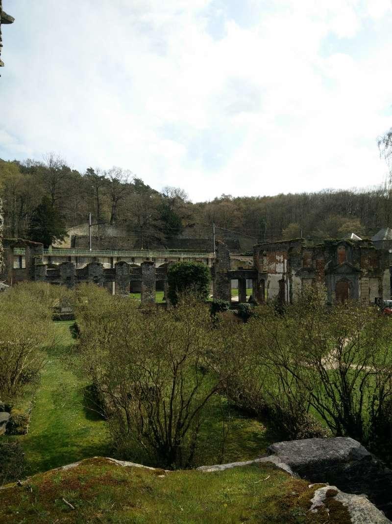 Balade dans l'Abbaye de Villers-La-Ville  Img_2043