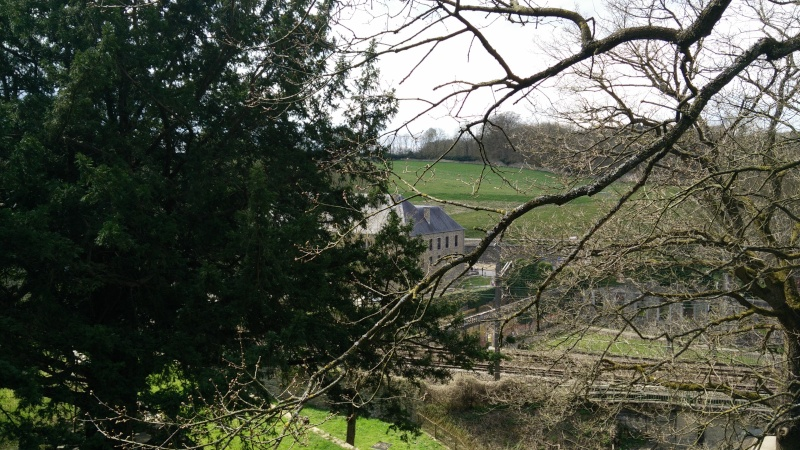 Balade dans l'Abbaye de Villers-La-Ville  Img_2049
