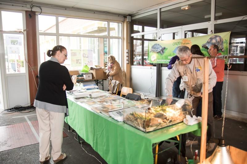 2ème bourse aux poissons de l'association Lille Aquariophile Club - Page 2 24042085