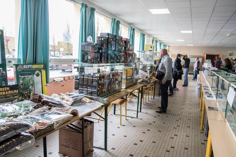 2ème bourse aux poissons de l'association Lille Aquariophile Club - Page 2 24042106