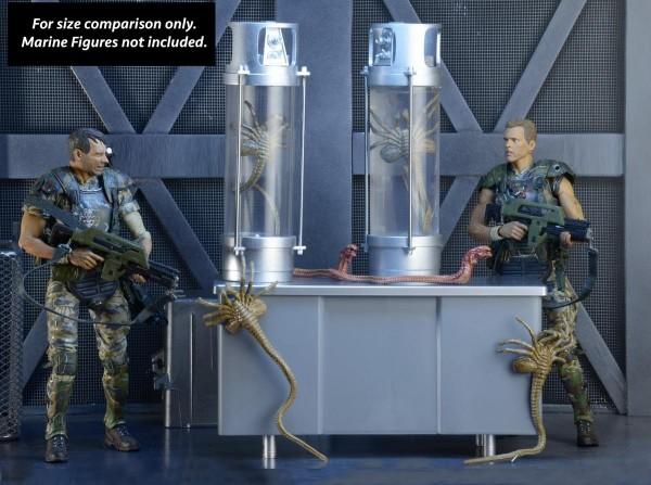 Aliens - 30 ans - Neca (et autres) Image20