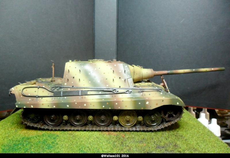 Jagdtiger Sd.Kfz.186 Tamiya, Aber, RB Model 1/35 Disposition??? - Page 12 Sam_1610