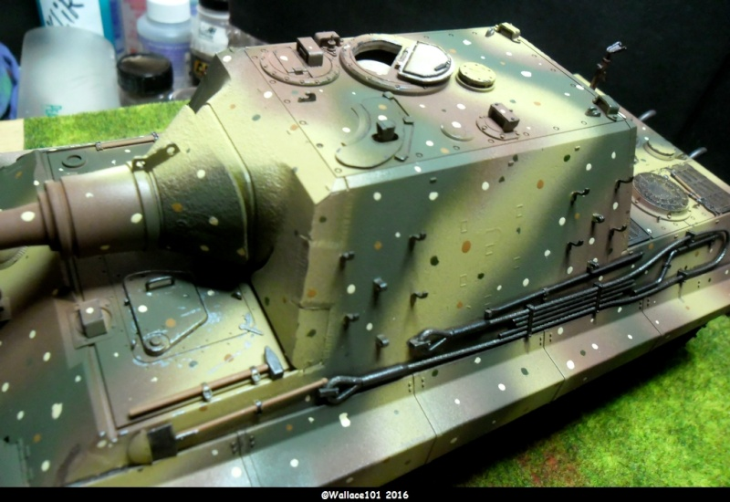 Jagdtiger Sd.Kfz.186 Tamiya, Aber, RB Model 1/35 Disposition??? - Page 12 Sam_1613