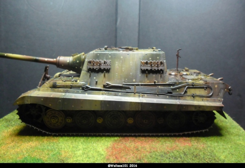 Jagdtiger Sd.Kfz.186 Tamiya, Aber, RB Model 1/35 Disposition??? - Page 13 Sam_1717