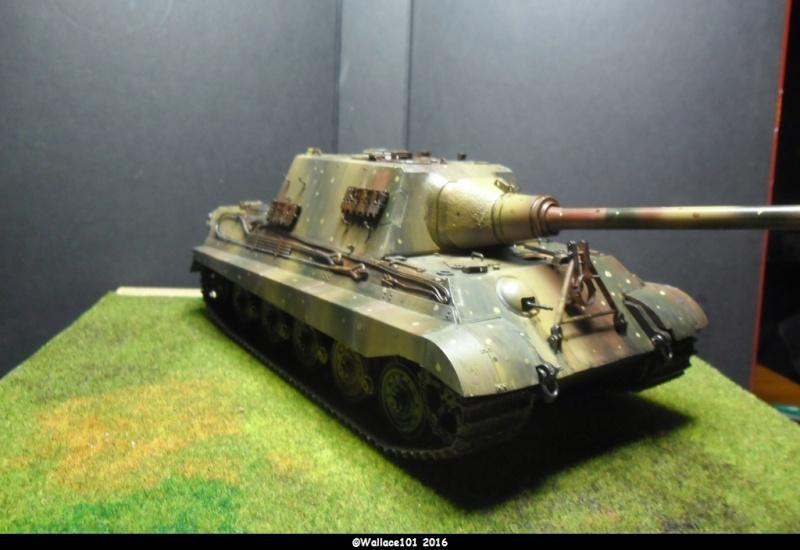 Jagdtiger Sd.Kfz.186 Tamiya, Aber, RB Model 1/35 Disposition??? - Page 13 Sam_1718