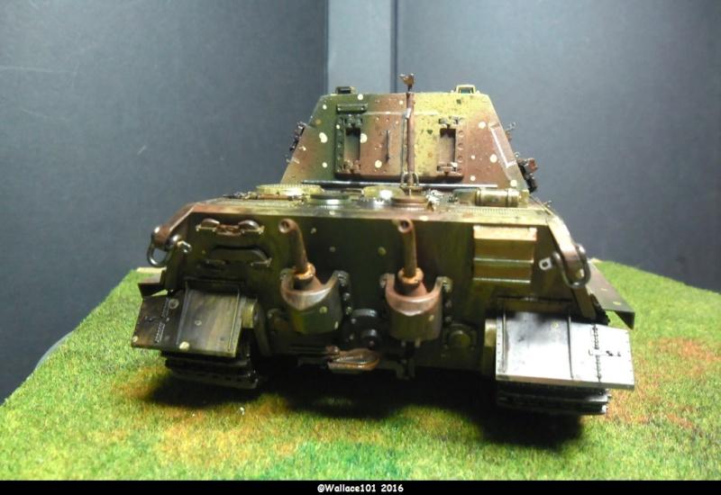 Jagdtiger Sd.Kfz.186 Tamiya, Aber, RB Model 1/35 Disposition??? - Page 13 Sam_1720