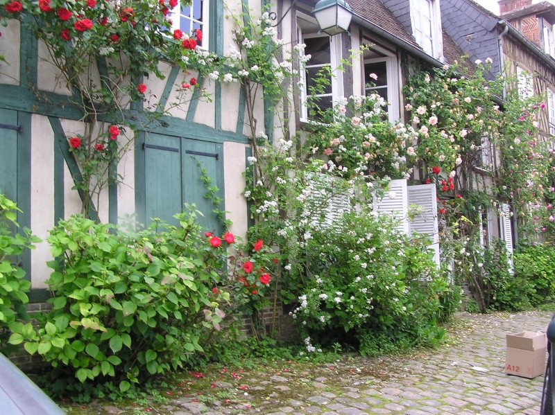 Jardins du nord - Picardie - Nord-Belgique - Champagne-Ardennes P1010011