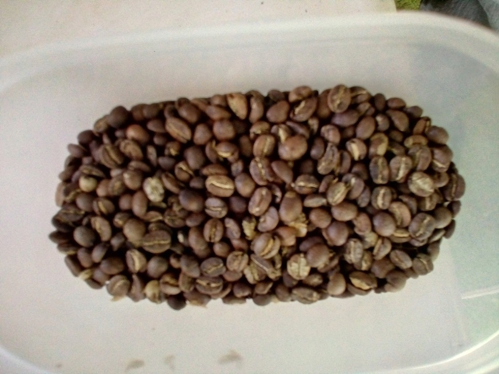 Coffee Discoverey (Japan) Img_2026