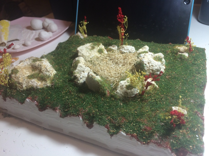 [Diorama + mini tuto] Nid de dragon Img_0226