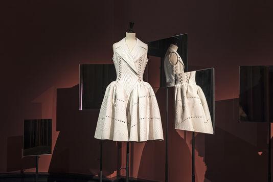"""Expo """"Anatomie d'une collection"""" au Palais Galliera 49225912"""