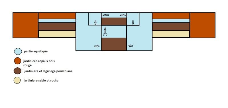 le bassin floral d'été de mes anodonte et moules naine - Page 2 Plant_10