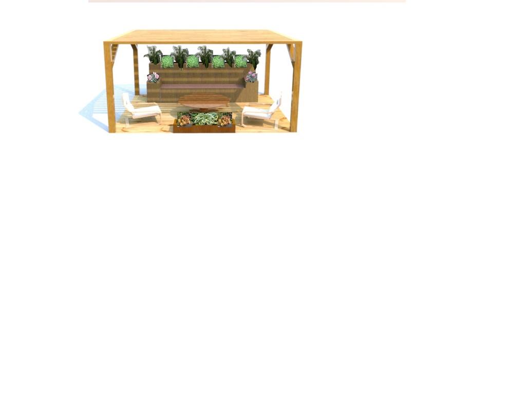 le bassin floral d'été de mes anodonte et moules naine - Page 3 Salon_12