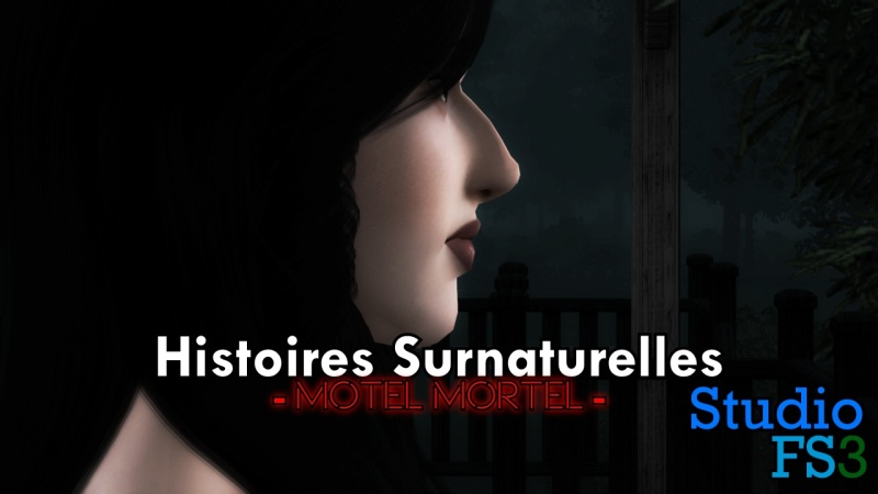 [Créations Diverses] Chaîne de StudioFS3 Histoi14