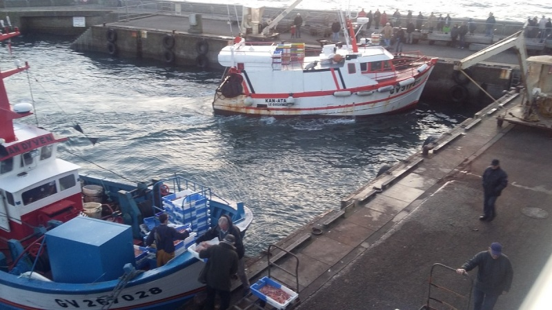 [Activité des ports] Le Guilvinec - Page 3 251010