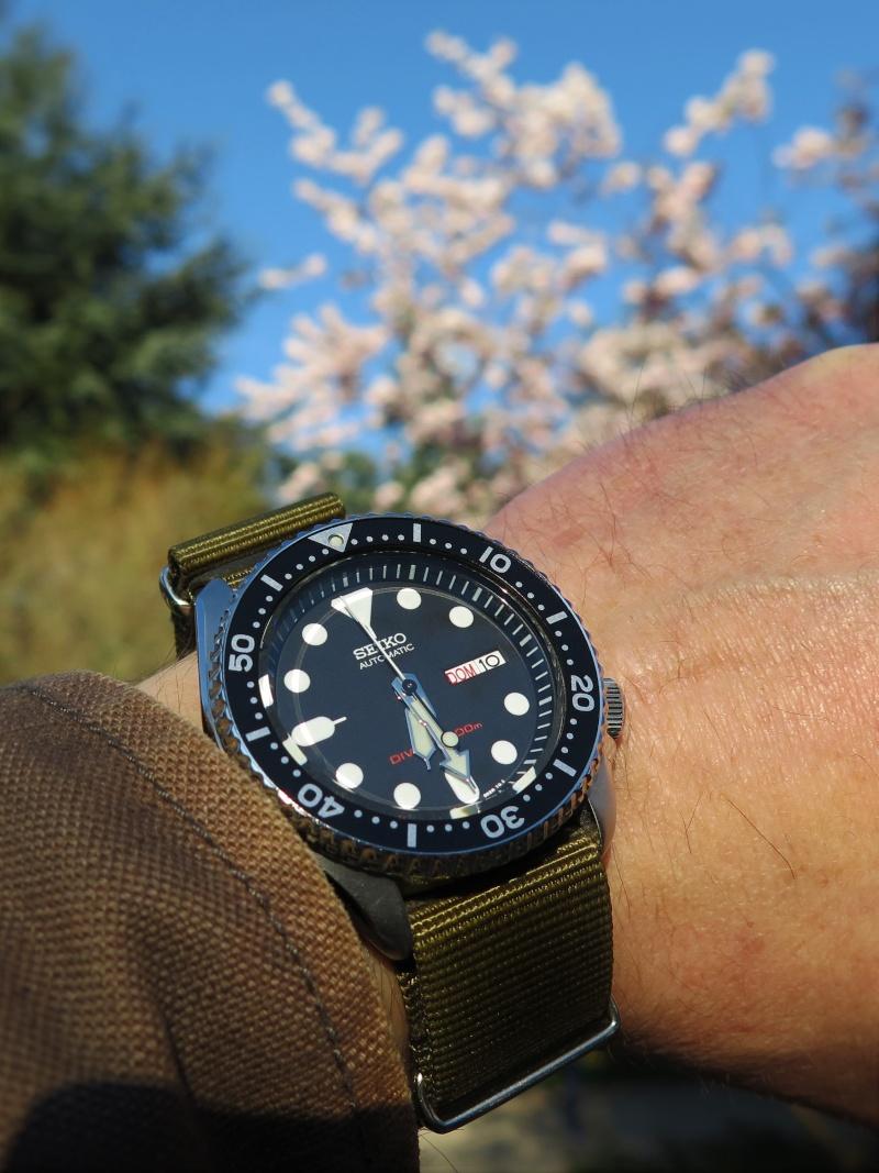 Votre montre du jour - Page 5 Tofduj10