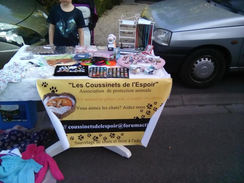 Grisette, Rouquette et Cie Corali10