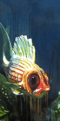 Carnassier Fish_b11