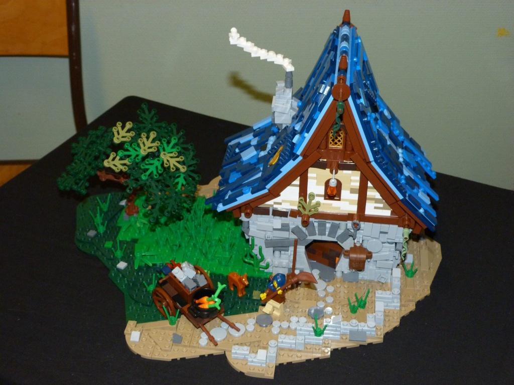 Diorama Elves exposition de LEGO Villeurbanne 2/04/16 12885710
