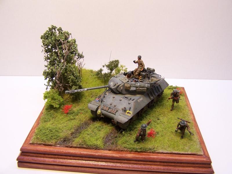 La chasse aux Tigres ,opération Goodwood 19.07.44 100_9222