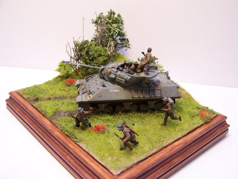 La chasse aux Tigres ,opération Goodwood 19.07.44 100_9223
