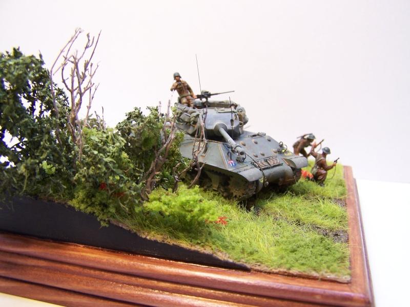 La chasse aux Tigres ,opération Goodwood 19.07.44 100_9226