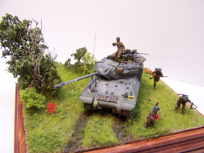 La chasse aux Tigres ,opération Goodwood 19.07.44 100_9227