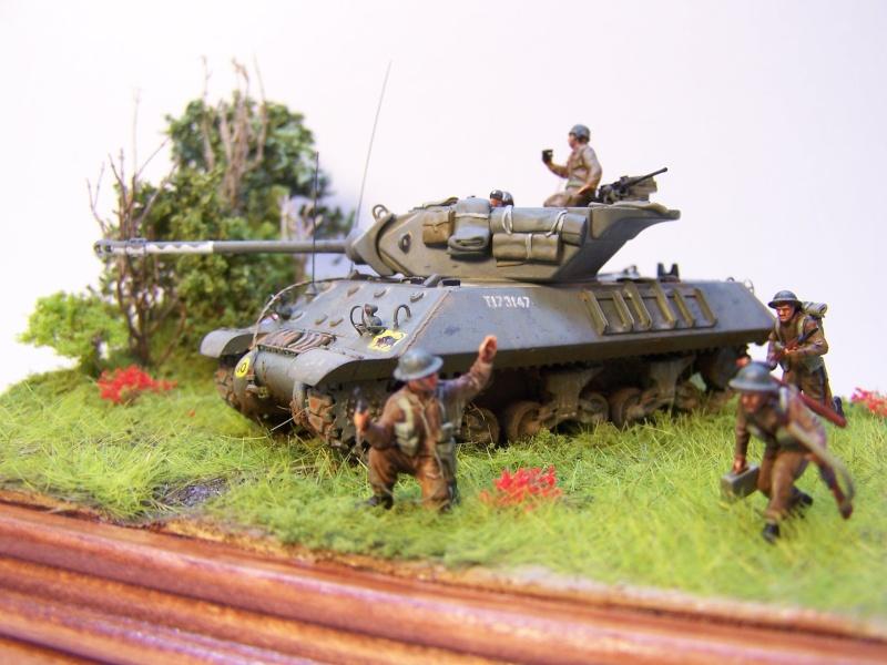 La chasse aux Tigres ,opération Goodwood 19.07.44 100_9228