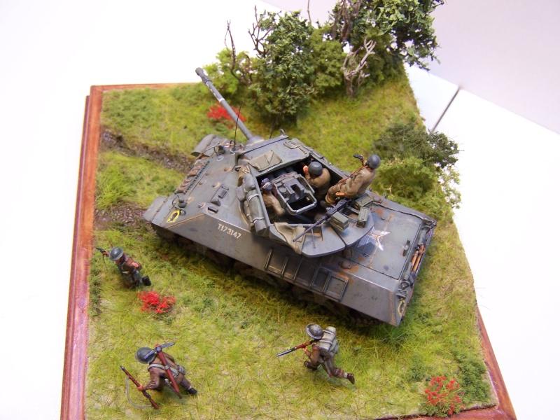 La chasse aux Tigres ,opération Goodwood 19.07.44 100_9229