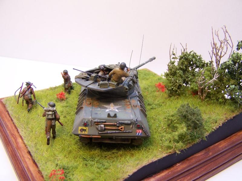 La chasse aux Tigres ,opération Goodwood 19.07.44 100_9230