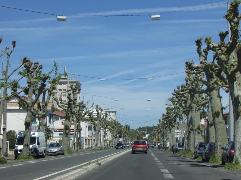 Ville de Bordeaux - Page 2 Img_3619